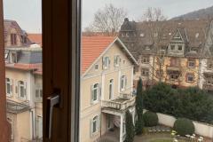Blick_aus_dem_Wohnzimmer